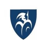 Capital Guardians - Newcastle NSW. Logo